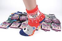 Детские шерстяные носки на девочку р.19-26 (C722/M) | 12 пар