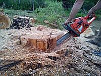 Уборка деревьев (067) 409 30 70
