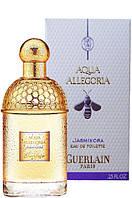 Guerlain Aqua Allegoria Jasminora 75Ml   Edt