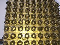 Щетинистое покрытие золотое Польша