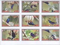 Руанда. Птицы  2008 без/зупцов