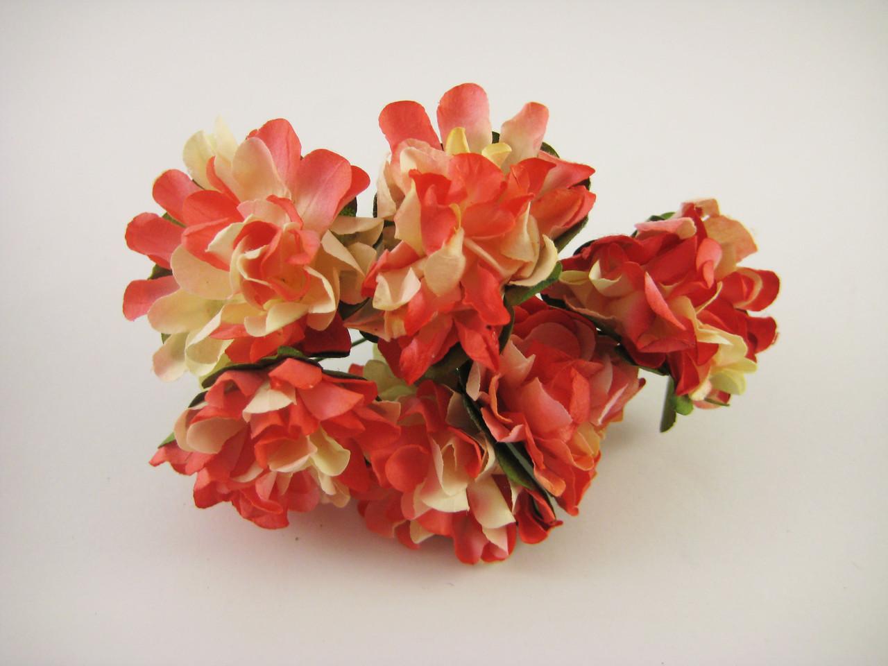 Цветок Красный с желтым