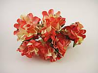 Цветок Красный с желтым, фото 1