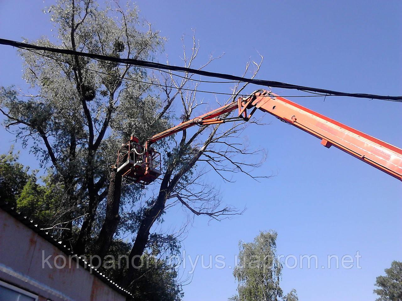 Видалення складних дерев (067) 409 30 70
