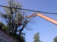 Видалення складних дерев (067) 409 30 70, фото 1