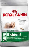 Royal Canin Mini Exigent 800 г для маленьких пород, привередливых в питании, фото 1