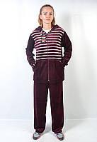 Женский велюровый спортивный костюм больших размеров - зебра (бордо)