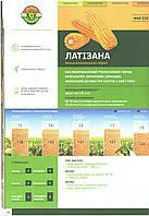 Семена кукурузы под гербициды гибрид ЛАТИЗАНА  (Лимагрейн) ФАО 320 пос.ед: 50 000 семян