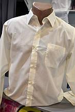 S/46 Классическая  мужская сорочка длинный рукав лимонный