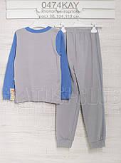 Пижамы детские 104см,  хлопок-интерлок, 2203ино. В наличии 98,104,110  Рост, фото 2
