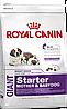 Royal Canin Giant Starter 4 кг для щенков гигантских пород
