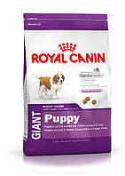 Royal Canin Giant Puppy 4 кг для щенков гигантских пород