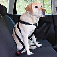 Пояс-шлея безопасности для собак в авто Trixie 30-60 см (Вест-хайленд-терьер)