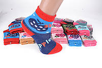 Детские шерстяные носки на девочку р.19-26 (C721/M) | 12 пар