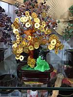 Денежное дерево с монетами - для привлечения богатства