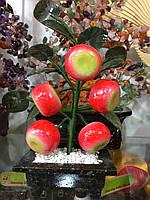 Дерево из яблок 5 плодов