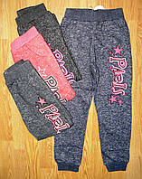 Спортивные утепленные штаны для девочек оптом, Glass Bear, 134, 140, 146 рр.