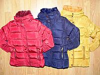 Куртки зимние на девочек оптом, Nature, 2-9 рр, фото 1