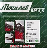 Бензопила Могилев БМ-5,5 (2 шины, 2 цепи), фото 3
