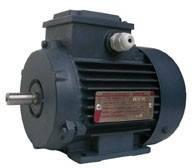 АИР 63, Электродвигатель