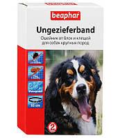 Ошейник Beaphar (Беафар) XXL для больших собак 85 см от блох и клещей