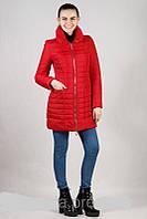 Демисезонная женская куртка с высоким воротником (54-62)