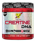 Creatine DNA (309 g unflavored)