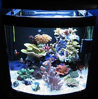 Resun GT-100  аквариум морской  100л +Скребок магнитный Resun MB-M