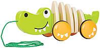 HAPE Игрушка - каталка Длинный  Крокодил  (Е0348)