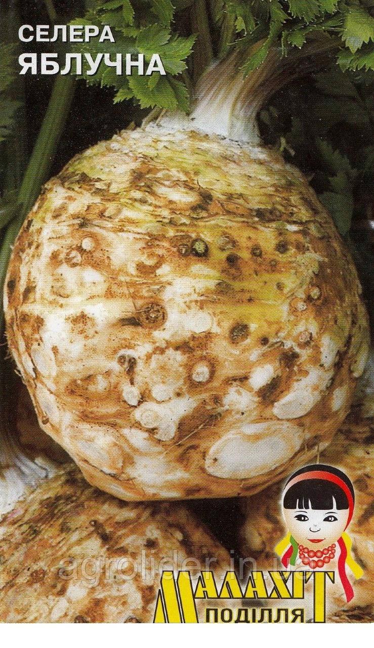 Семена сельдерей Яблочный 0.5г Белый (Малахiт Подiлля)