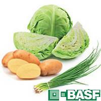 Ровраль Аквафло КС (1л) - фунгицид на капусту и лук