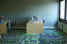 Офисный ковролин, фото 3