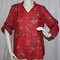 Рубашка Zendra (хлопок/шелк) - M