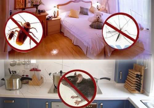 Средства от домашних вредителей
