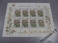 марки Россия 1995 клевер луговой флора лист москва-97