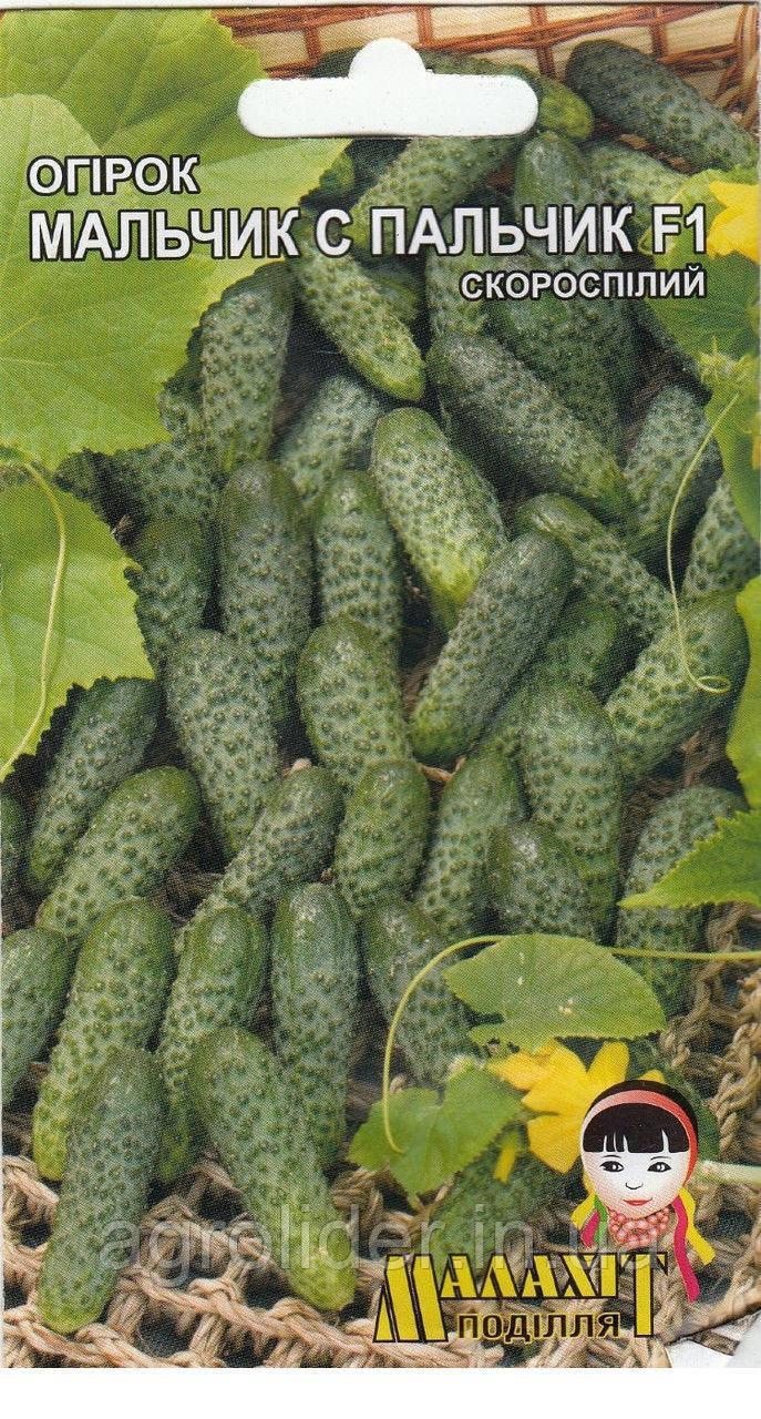 Семена огурец Мальчик с пальчик 0.5г Зеленый (Малахiт Подiлля)