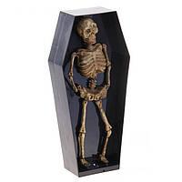 """Прикол """"Скелет в гробу"""" музыкальный, двигается, светится Halloween LED Lighted Musical Dancing Skeleton Coffin"""