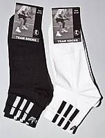 Носки мужские Team Socks, размер 39-42, 42-45