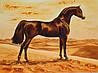Картина из янтаря Арабский жеребец
