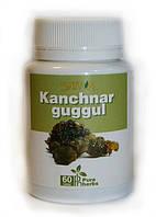 Канчнар Гуггул - эффективный препарат для лимфатической системы!