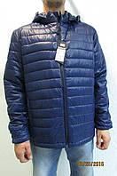Мужская спортивная куртка Remain 8057 синяя  код 243б