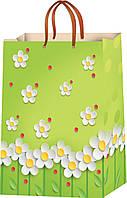 Подарочные пакеты для девушек размер 23 х 18 см (12 шт./уп.)