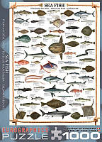 Пазлы Eurographics Морские рыбы 1000 эл. (6000-0313)