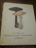 Профилактика отравлений грибами  С.Мартынов