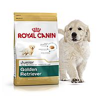 Royal Canin Golden Retriever Junior 3 кг для щенков голден ретривера