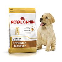 Royal Canin Labrador Retriever Junior 3 кг для щенков лабрадора