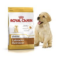 Royal Canin Labrador Retriever Junior 12 кг для щенков лабрадора, фото 1
