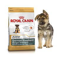 Royal Canin German Shepherd Junior 12 кг для щенков немецкой овчарки