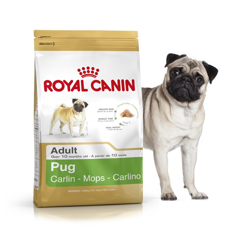 Royal Canin Pug 3 кг для взрослых собак породы мопс - Интернет-зоомагазин Royal Zoo в Харькове