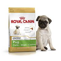 Royal Canin Pug Junior 1,5 кг для щенков породы мопс